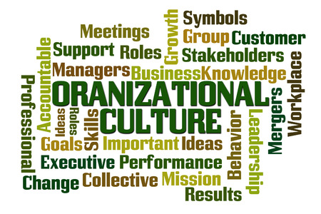 31704567 - organizational culture word cloud on white background